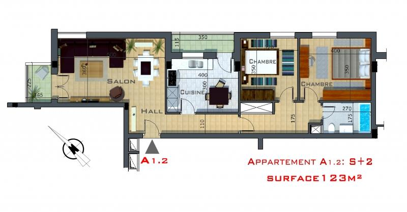 appartement luxueux