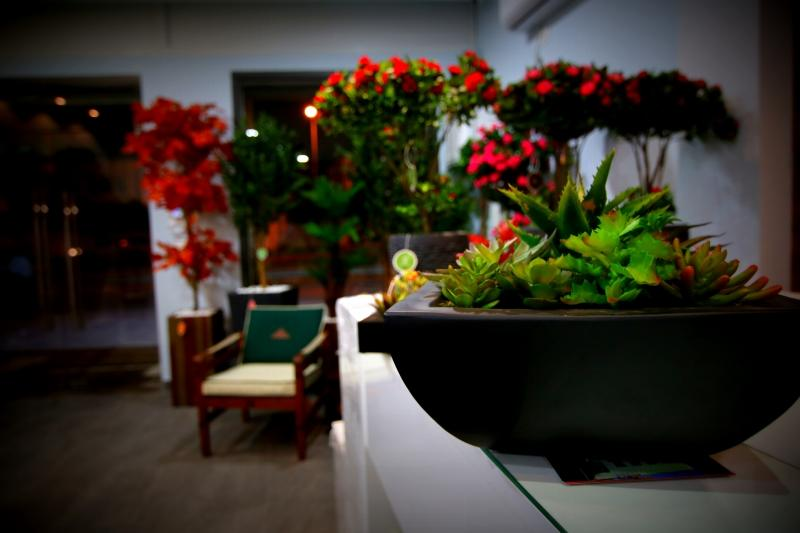 Cactus artificiels for Vente plantes artificielles tunisie