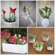 Des fleurs décoratif trés jolie